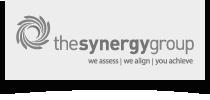 The Synergy Group